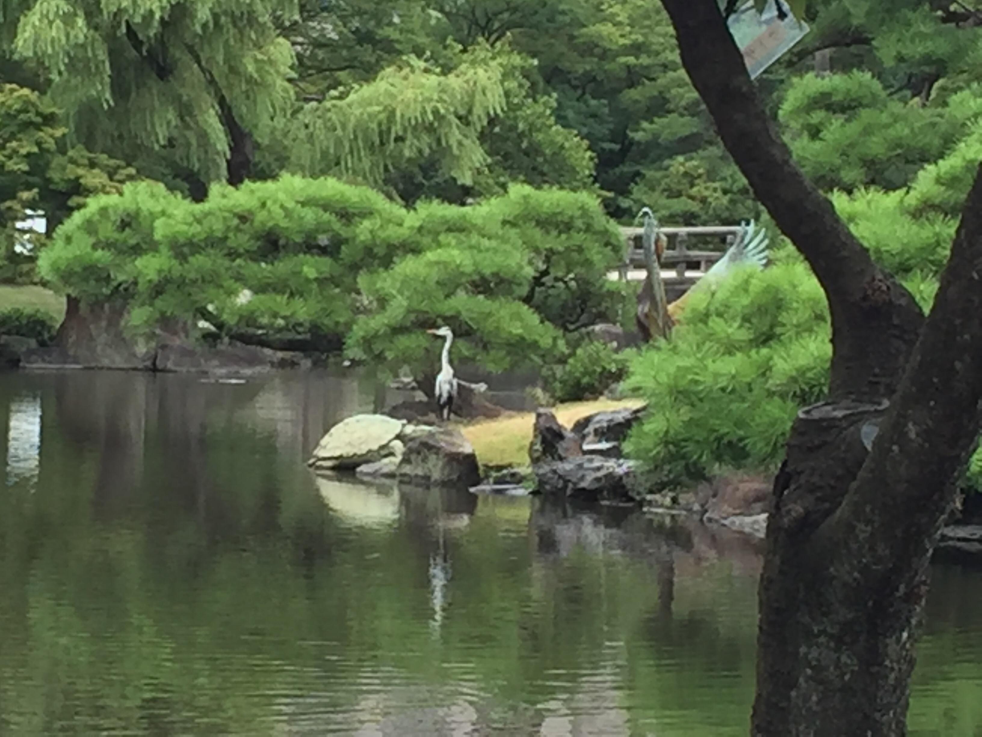 鶴舞公園の景色