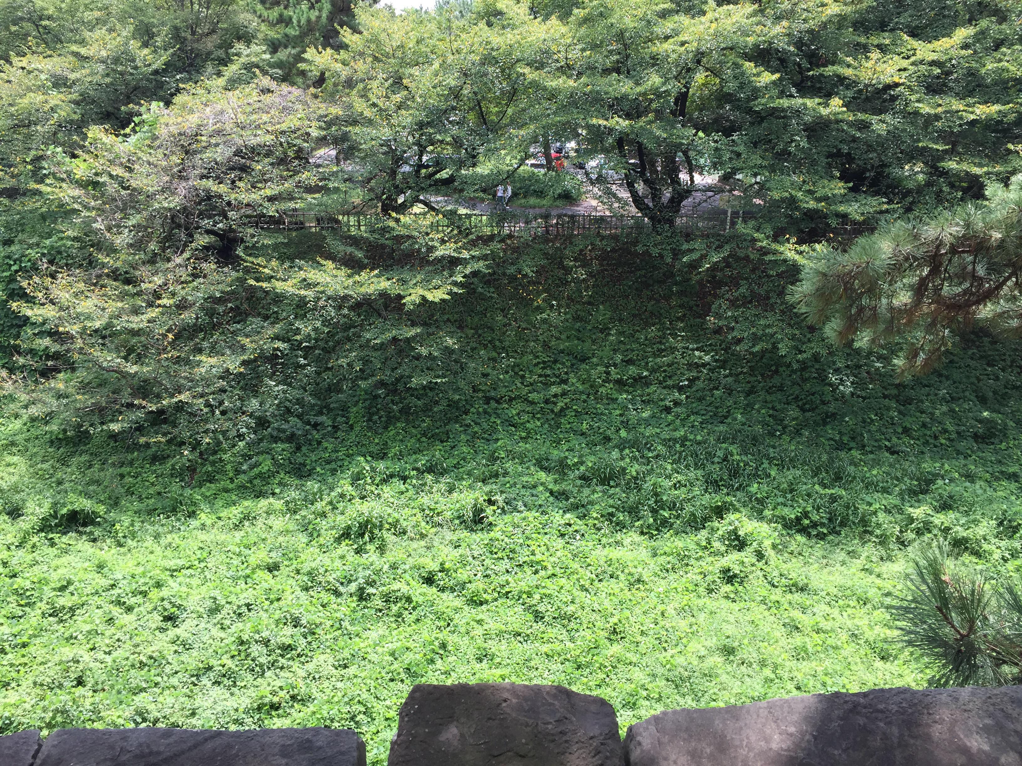 名古屋城 堀