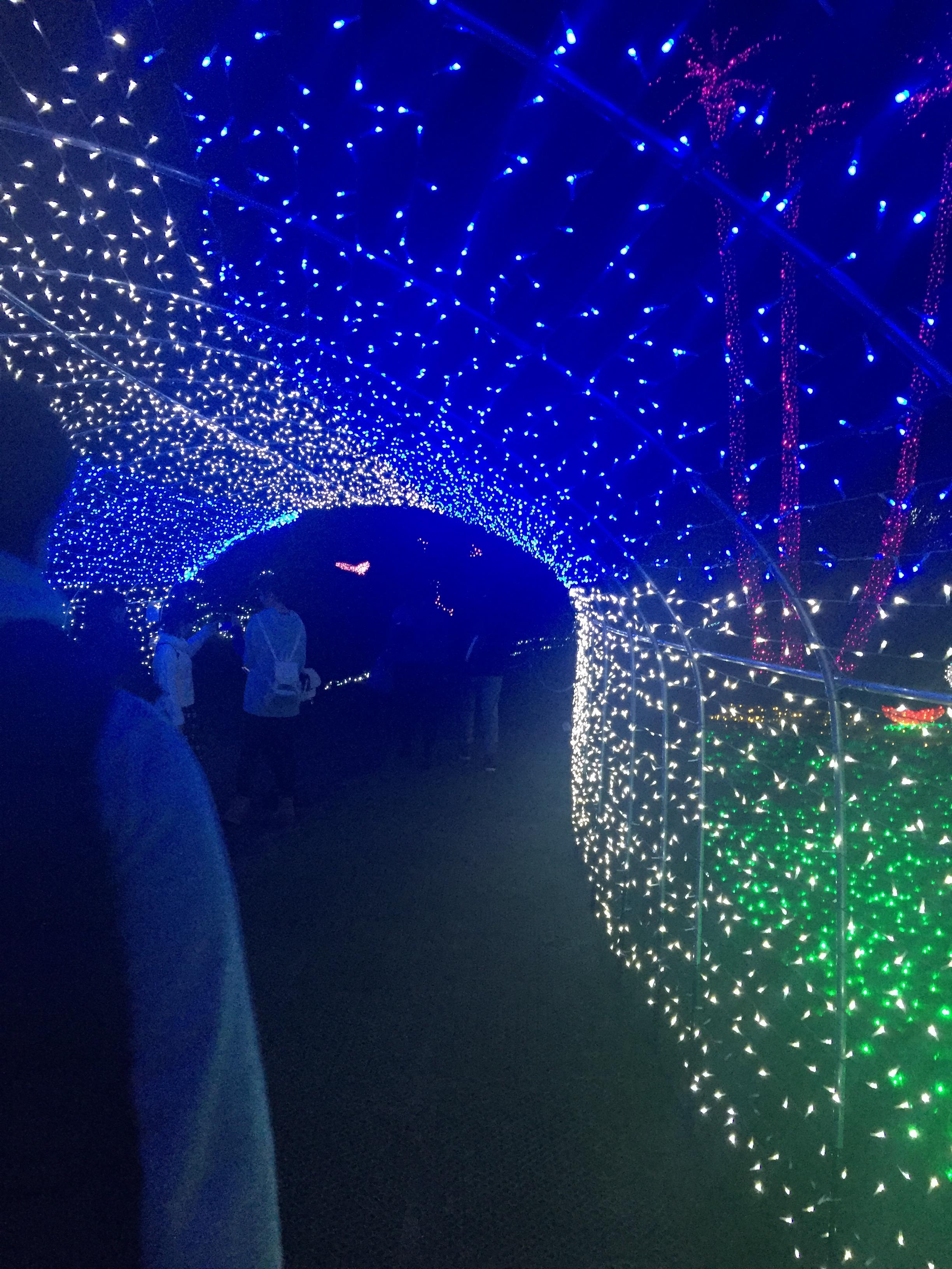 フローランテ宮崎 イルミネーション ヒカリのトンネル
